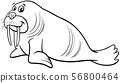 walrus animal character cartoon coloring page 56800464