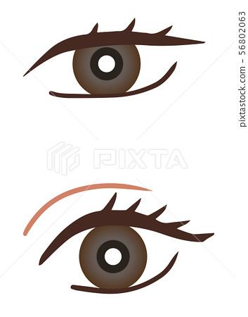 Single eye double 56802063