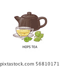 Hops tea - cup and teapot with healthy yellow herbal drink from hop and humulus plant 56810171