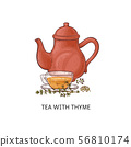 Tea with thyme - healthy herbal drink in glass teacup and red teapot. 56810174