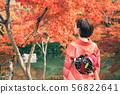 단풍과 기모노 여성 56822641