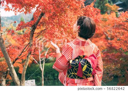 秋季葉子和和服婦女 56822642