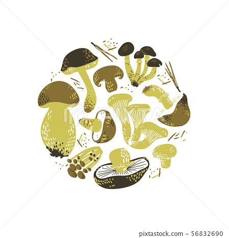 Edible Mushrooms round illustration. Linocut old style. Hand drawn vector illustration. 56832690
