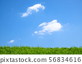 제방 위의 구름 56834616
