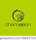 chameleon design template 56835756