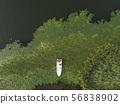 가을 두물머리 연밭 풍경 56838902