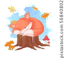 Vector cartoon style illustration of sleeping fox. Icon for web. Isolated on white background 56840802