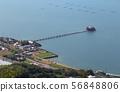 """삼풍시 미노 쵸 아이의 하나님 """"쓰시마 신사 '여름 대축제 56848806"""