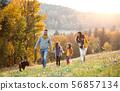 family, children, small 56857134