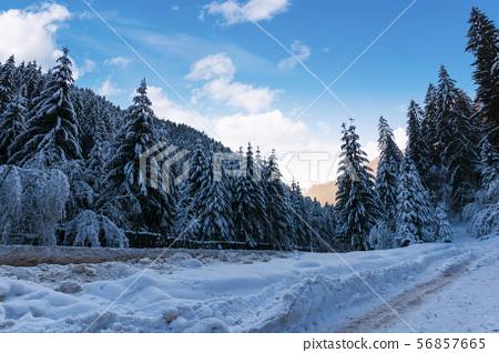 beautiful winter landscape in mountains 56857665