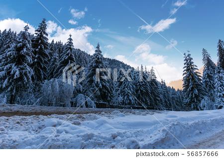 beautiful winter landscape in mountains 56857666