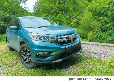 honda crv in the forest 56857903