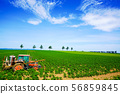 감자 밭 트랙터 하늘 도시 56859845
