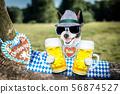 bavarian beer dog 56874527