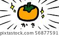 가을의 미각 소재 가을 식욕 재료 간단한 필기 아날로그 굴 감 56877591