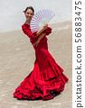 Woman Spanish Flamenco Dancer 56883475