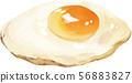 煎蛋真正的插圖 56883827