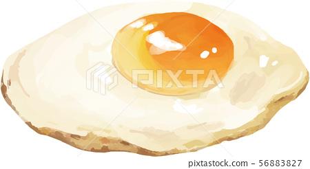 Fried egg real illustration 56883827