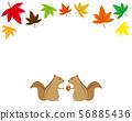 단풍 단풍 나무 단풍 낙엽 단풍 아이콘 가을 다람쥐 56885436