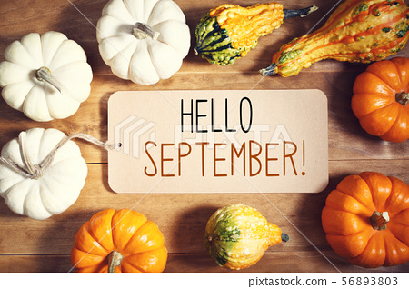 Hello September message with collection of pumpkins 56893803