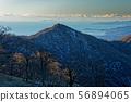 丹沢山 능선에서 볼 塔노岳와 재두루미 이즈의 섬 56894065