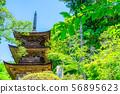 국보 大法寺 삼중 탑 아오키 촌 【나가노 현】 56895623