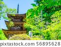 National Treasure Daiho-ji Mie Tower Aoki Village [Nagano Prefecture] 56895628