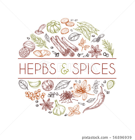 Herbs and spices background. Hand drawn asian food. Indian cooking herbs vector engraved style 56896939