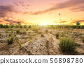 Brown Land with dry soil or cracked ground texture 56898780