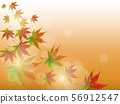 色的葉子背景 56912547