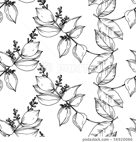 Vector Tropical flowers and leaves isolated. Black and white engraved ink art. Seamless background 56920066
