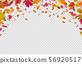 Autumn falling leaves. Autumnal forest foliage fall. Vector illustration isolated on white 56920517
