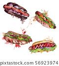 Hot dog fast food isolated. Watercolor background illustration set. Isolated snack illustration 56923974