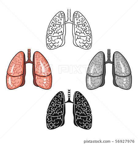 Human Lungs Icon In Cartoon Black Style Stock Illustration 56927976 Pixta Download beautiful, curated free backgrounds on unsplash. https www pixtastock com illustration 56927976