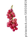 red grapes isolated on white background. 56930859