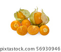 Cape gooseberry isolated on white background 56930946