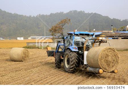 가을걷이, 논농사, 트랙터 56933474