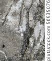 破裂的混凝土 56935076