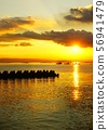 The golden sea lit by the sun 56941479