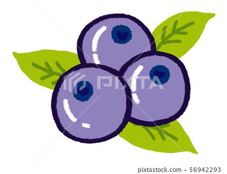 blueberry 56942293
