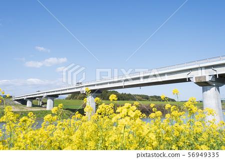 橋樑晴朗的藍天天空 56949335