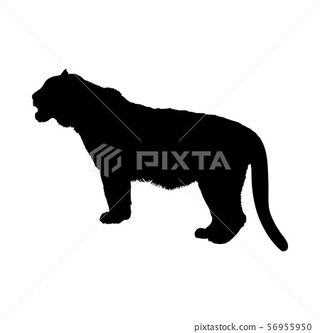 Tiger Silhouette : ✓ free for commercial use ✓ high quality images.