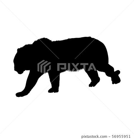 Tiger Silhouette Stock Illustration 56955951 Pixta Tiger silhouette from animals and mammals. pixta