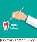 Dentist holds a dental instrument and tooth. Dental concept. Dentist background. Vector illustration. 56959222