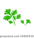 Parsley leaf in flat style isolated illustration on white background. 56960439