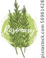 Fresh rosemary herb, natural and delicious food 56961428