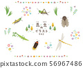 Insect illustration 2 56967486