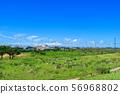 바다 파도 하늘 소사시 야수 부근 56968802