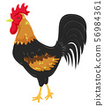 France Rooster Illustration 56984361