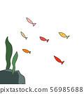 물속의 물고기들 56985688